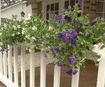 rain gutters as flower boxes