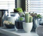 Natural Elements Still Inspire Interior Decor – Today's Homeowner