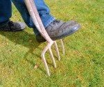 Why You Need to Aerate Your Lawn – Today's Homeowner