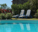 5 Pool Landscaping Ideas on A Budget – Today's Homeowner