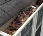 How to Clean Gutters and Downspouts – Today's Homeowner