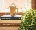 Best Houseplants to Improve Indoor Air Quality