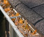 Leaves in the roof's rain gutter